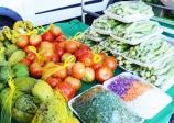 Miracatu terá Feira do Produtor rural às quartas-feiras